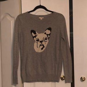 Boston Terrier Sweater